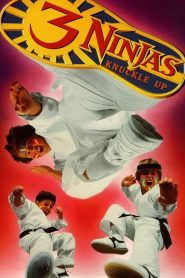 3 Ninjas Knuckle Up
